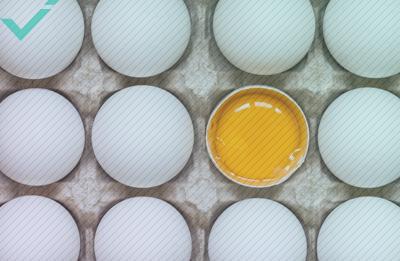 La squadra Norvegese ha ricevuto 15.000 uova a causa di un errore di traduzione