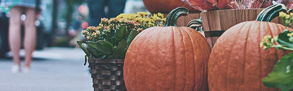 Circa il 48% degli italiani celebra Halloween.
