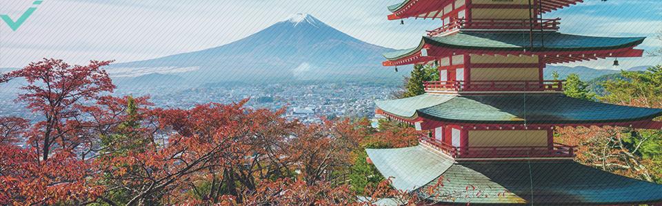 Il Giappone ha uno dei tassi di alfabetizzazione più alti al mondo.