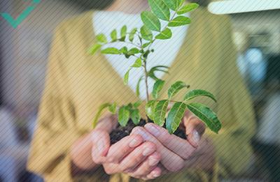 E-commerce e tutela dell'ambiente: cosa potete fare?